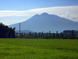 tsugaru pic