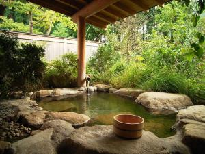 33-shirakawago-onsen-japan