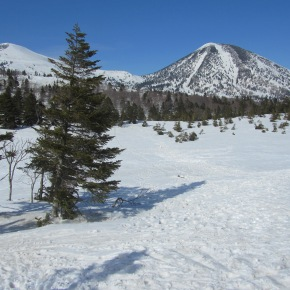 Mt. Hakkoda: Adventures in Snowshoeing