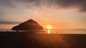 """Asamushi Beach: """"Bai Bai Beaches""""Event"""