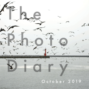 The Photo Diary October 2019