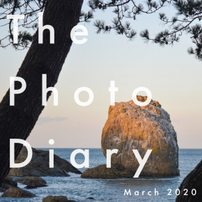 The Photo Diary March 2020