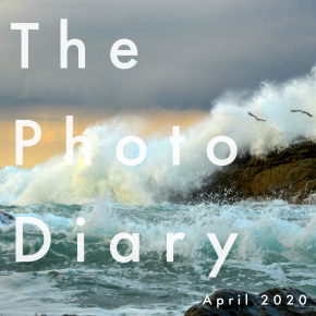 The Photo Diary April 2020